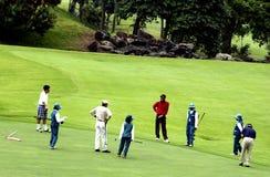 Tamandayu高尔夫球 库存图片