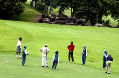 Tamandayu golf Stock Images