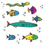 Tamanho diferente colorido exótico dos peixes do mar e do rio multi no fundo branco Fotos de Stock Royalty Free
