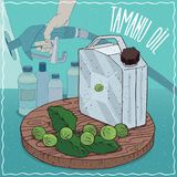 Tamanu oil used for fuel production. Metal Jerrycan of Tamanu oil and fruits and leaves of Calophyllum plant. Filling at gas petrol station. Natural vegetable royalty free illustration