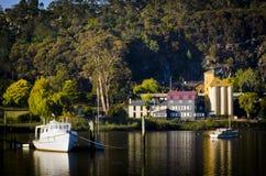 Tamar河在Launceston,塔斯马尼亚岛,澳洲 免版税库存照片