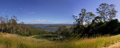Tamar valley beauty Stock Images
