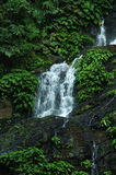 Tamaraw falls 60. Waterfall Royalty Free Stock Images