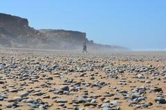 Tamari strand Arkivfoto