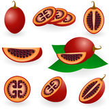Tamarillo Stock Images