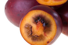 Tamarillo Stock Photo