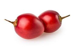 Tamarillo Stock Photography