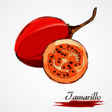 Tamarillo Stockfotos
