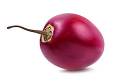 Tamarillo d'isolement sur le blanc Photographie stock