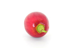 Tamarillo end Royalty Free Stock Photo