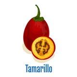 Tamarillo fruit icon emblem Stock Image