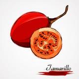 Tamarillo Stock Photos