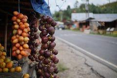 Tamarillo och mangosteen på stallen i Medan Indonesien Fotografering för Bildbyråer