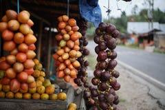 Tamarillo och mangosteen på stallen i Medan Indonesien Royaltyfri Fotografi