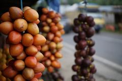 Tamarillo am Stall in Medan Indonesien stockbilder