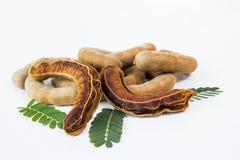 Tamarind γλυκό στοκ φωτογραφία με δικαίωμα ελεύθερης χρήσης