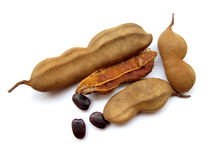 Free Tamarind Stock Photography - 21182292
