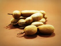 Tamarind Fruit Royalty Free Stock Images