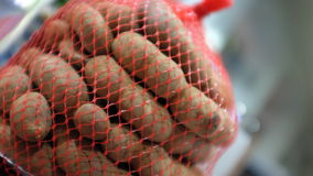 Tamarind. Fruit in a net bag Stock Photography