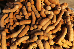 Tamarind fruit pods pile at the food market stall Royalty Free Stock Photos