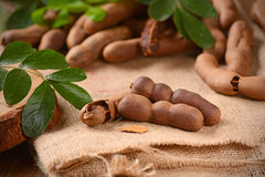 Tamarind fruit on the table Royalty Free Stock Images