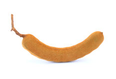 Tamarind isolated Royalty Free Stock Photos