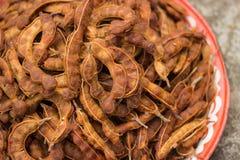 Tamarind maduro Fotografia de Stock Royalty Free