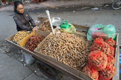 Tamarind on a pushcart, Set for Sale, Wild Street Market, Ha Tien, Vietnam, Asia Pacific Royalty Free Stock Photos