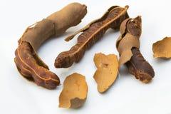 Tamarind Seeds Stock Photo