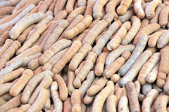Tamarind of stacked in abundance. Stock Photography