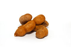 The tamarind Royalty Free Stock Photos