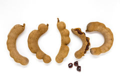 Tamarind on white background Royalty Free Stock Photo