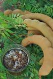 Tamarindesaft in einem Glas Stockfotos