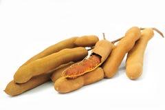 tamarindfrukt Arkivbild