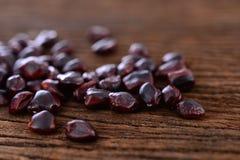 Tamarindfrukt kärnar ur royaltyfria foton