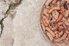 Tamarindfruktdeg torkas i The Sun på korgen Arkivbilder