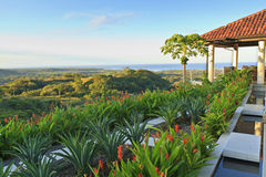 Tamarindo-Landhaus-und Kokosnuss-Baum Lizenzfreies Stockfoto