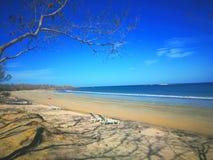Tamarindo plaża, Guanacaste, Costa Rica zdjęcia stock