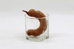 Tamarindo in un vetro Fotografie Stock Libere da Diritti