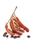 tamarindos maduros frescos no fundo branco Foto de Stock Royalty Free