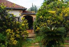 Tambaú São保罗巴西 免版税图库摄影