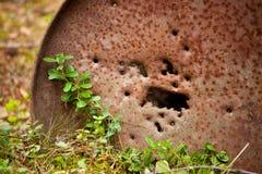 Tambor de petróleo oxidado na natureza fotografia de stock
