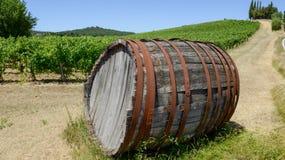 Tambor de vinho do Chianti em um Wineyard em Toscânia fotografia de stock royalty free