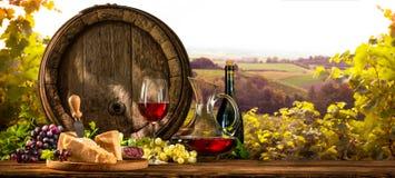 Tambor de vinho no vinhedo imagens de stock royalty free