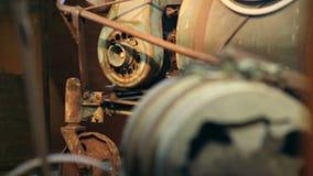 Tambor velho e outras necessidades para lúpulos crescentes vídeos de arquivo