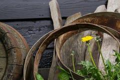 Tambores da flor e do barril Fotografia de Stock