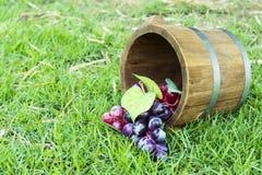 Tambores 1 da uva e do carvalho Imagem de Stock Royalty Free