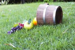 Tambores 3 da uva e do carvalho Fotos de Stock Royalty Free