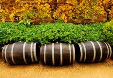 Tambores de vinho Fotos de Stock Royalty Free