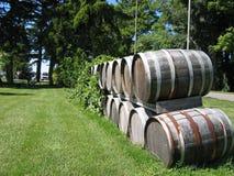 Tambores de vinho de madeira Fotografia de Stock